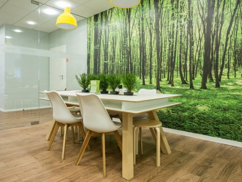 Przyroda w biurze