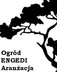 Pracownia Sztuki Ogrodowej              E N G E D I