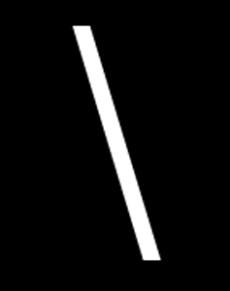 kamil dębowski