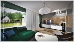Salon z zielona kanapą