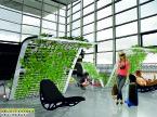 Zieleń we wnętrzu nowego terminalu we Wrocławiu