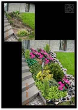Odświeżenie ogrodu - Swoszowice