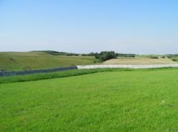 Trawnik na gliniastej skarpie