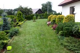 Ogród - Kraków - W