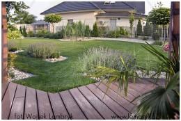 Ogród w Cieniu Katalpy