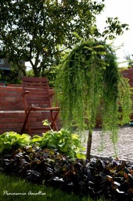 Mały ogród miejski Mrągowo