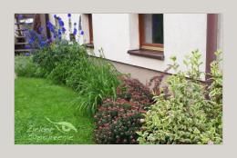 Mały ogród w Krakowie