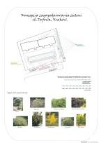 Koncepcja zagospodarowania zieleni - Torfowa
