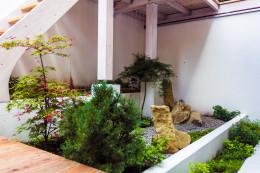 Patio w stylu Japońskim
