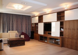 Apartament na Dolnej w Warszawie