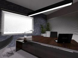 Pomieszczenie biurowe z gabinetem