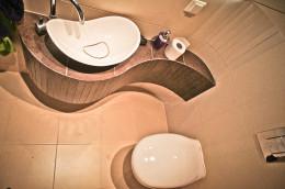 realizacja projektu toalety w Sosnowcu