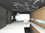 Grafitowe WC