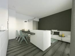 Salon z aneksem kuchennym 001
