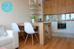 Projekt salonu z kuchnią, TORUŃ