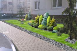 Projekt rewitalizacji zieleni osiedlowej