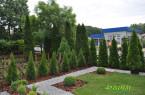Geometryczny ogród