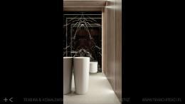 dom 250 m2 - łazienki