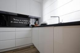 aranżacja wnętrz / projekt kuchni