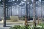 Leśny Park Zmysłów, Wieniec-Zdrój