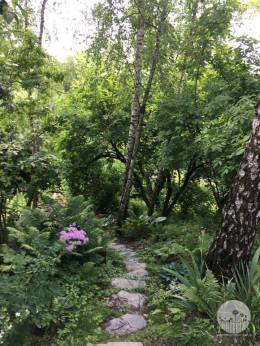 Ogród w stylu naturalistycznym