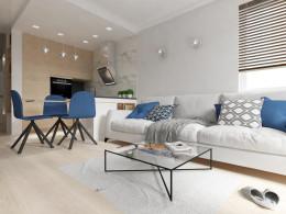 Projekt koncepcyjny wnętrza apartamentu w Krakowie