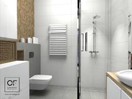 Projekt łazienki w Aleksandrowie Łódzkim